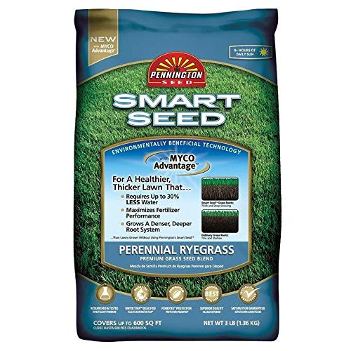 GEOPONICS EZ-Straw MLEZSTRAWMULCH1 Seeding Mulch Mit Tack, Brown -