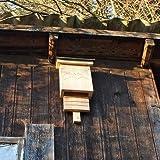 Fledermauskasten - Feldermaushöhle für den Garten