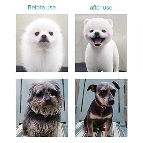 GHB Hundeschere Professionelle Schere Schneiden Scheren-Set für Fellpflege,Kurvige,Grooming für Hunde und Katzen - 2