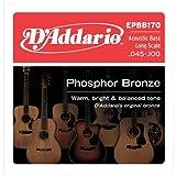 Best D'Addario Acoustic Bass Guitars - D'Addario Single Bass Phosphor Brz 065 Review