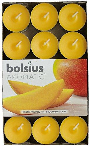 Aromatischen Exotic Mango Duft Teelicht, Paraffin Wachs, orange, 30Stück (Mango-duft)