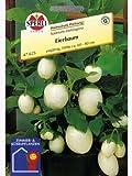 Eierbaum Essbare Früchte Solanum melongena