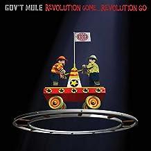 Revolution Come...Revolution Go (2lp) [Vinyl LP]
