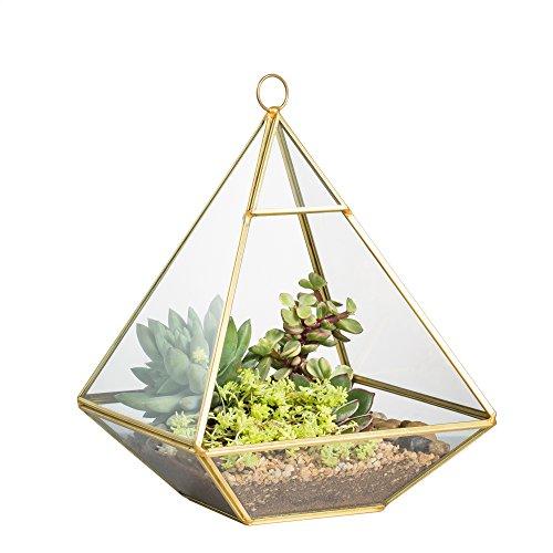 Rame vertebrale tavolo in metallo e vetro, motivo terrari muschio piante Fioriera Vaso Felce 15x 15x 15cm Oro - Vintage Ceramica Mold