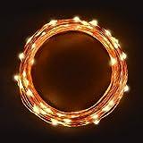 Cadena Luces LED 11m, Sunix alambre de cobre impermeable, 110 LED blanco cálido, guirnalda de luces, Ideales para Navidad, hogar, fiesta, boda, jardín, día festivo, Festival, decoración para navidad