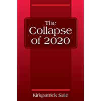 The Collapse of 2020 (English Edition)