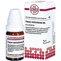 Fucus Vesiculosus D 6 Globuli 10 g preisvergleich bei billige-tabletten.eu