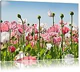 Blumenwiese Mohnblumen Bild auf Leinwand, XXL riesige Bilder fertig gerahmt mit Keilrahmen, Kunstdruck auf Wandbild mit Rahmen, guenstiger als Gemaelde oder Bild, kein Poster oder Plakat, Format:100x70 cm