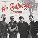 Fight Fire: The Complete Recordings 1964-1967 [VINYL]