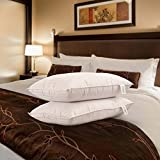Snoopy Ultra Premium Satin Pillow Set of 2 Pillows with 2 Pillow Covers - 17' x 27' , Satin White