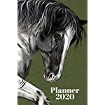 Planner 2020: Weekly, daily, planner with horse 2020, organizer, calendar  6x9 January-December 2020. Gift for horse lovers, sister, girl, animal lover, woman, man, boy, friend. Diary 2020.