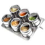 Candora Stainless Steel Magnetic Spice Jars with Rack, 6 PCS Metal Kitchen Condiment Storage Jar Tray Set (Kitchen & Home)