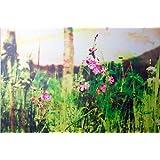 Am Wegesrand - Romantische Fotografie - Druck auf Holz 20 x 30cm