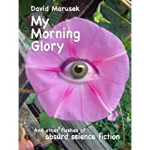 My Morning Glory and other flashes of absurd science fiction