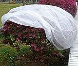 Piante della protezione Sacco Invernale in tessuto non tessuto 30G/M2