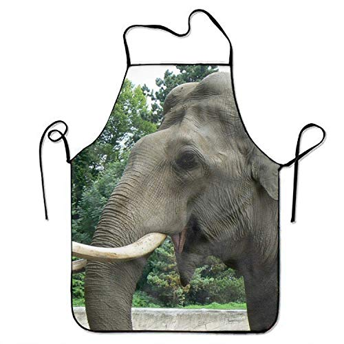best pillow Animal Asian Elephant Apron, Funny Cooking Kitchen BBQ Apron for Woman and Man Novelty Unisex Apron