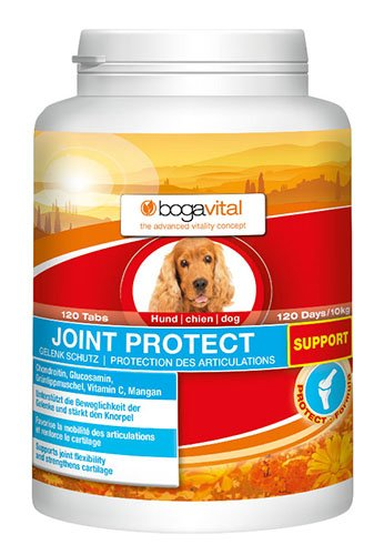 bogavital Joint Protect Support Hund, 1er Pack (1 x 180 g)