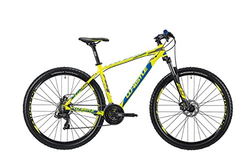 29 Zoll Mountainbike Whistle PATWIN 1835 Rahmengröße 17,19 oder 21 Zoll Hardtail, Rahmengrösse:17 Zoll