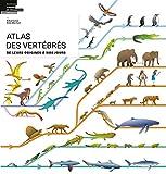 """Afficher """"Atlas des vertébrés"""""""