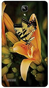 Timpax protective Armor Hard Bumper Back Case Cover. Multicolor printed on 3 Dimensional case with latest & finest graphic design art. Compatible with Xiaomi Red Mi Note Design No : TDZ-25791