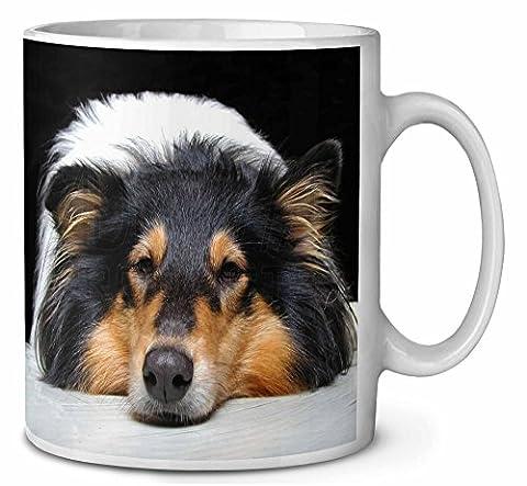 Tri- Couleur Border Collie Dog Tasse de café anniversaire cadeau de Noël