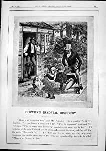 Pilules Immortelles 1892 de Beechams de Pierre de Découverte de Pickwicks
