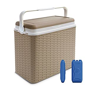 Large 24 Litre Cooler Rattan Box Camping Beach Lunch Picnic Insulated Food+ 2 Ice Packs