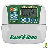 Rain Bird ESP RZX 6 stazioni programmatore da interno