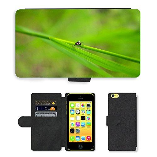 Just Mobile pour Hot Style Téléphone portable étui portefeuille en cuir PU avec fente pour carte/Plantes/m00139952Fly Bug insectes Nature Macro//Apple iPhone 5C