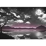 Fototapete Natur Himmel Mond - Vlies Wand Tapete Wohnzimmer Schlafzimmer Büro Flur Dekoration Wandbilder XXL Moderne Wanddeko - 100% MADE IN GERMANY - 9341010c
