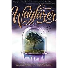Wayfarer (Passenger, Band 1)