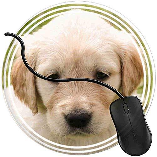 Mauspad,Welpen Hund Gesicht Lab Golden Gaming Mouse Pad Niedlich Anti-Rutsch-Mauspad Pads Für Heimcomputer Laptop 20 X 20 Cm -