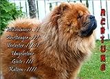 INDIGOS UG - Türschild FunSchild - SE398 DIN A4 ACHTUNG Hund CHOW CHOW CHOW-CHOW - für Käfig, Zwinger, Haustier, Tür, Tier, Aquarium - aus hochwertigem Alu-Dibond beschriftet sehr stabil