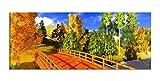 Leinwandbilder 1Tlg 100x40cm Japanische Brücke Wald Herbst Baum bunt Landschaft Leinwandbild Kunstdruck Wand Bilder Vlies Wandbild Leinwand Bild Druck 9Z957, Leinwandbild Größe:100x40cm