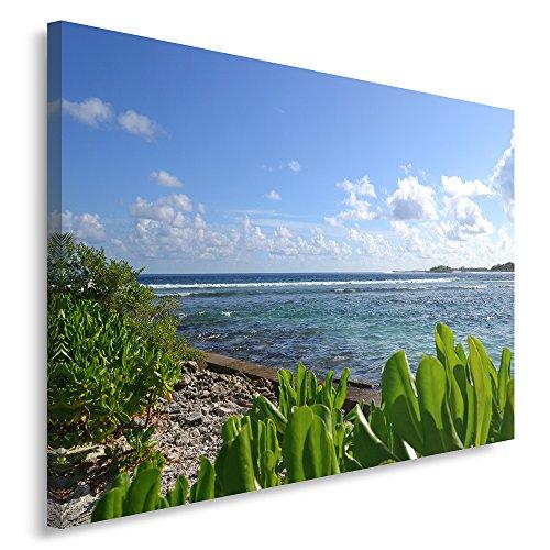 Feeby Frames, Tableau seul panneau , Tableau imprimé xxl, Tableau imprimé sur toile, Tableau deco, Canvas 40x60 cm, MER MÉDITERRANÉE, PLAGE, PLANTES, BLEU, RIVE