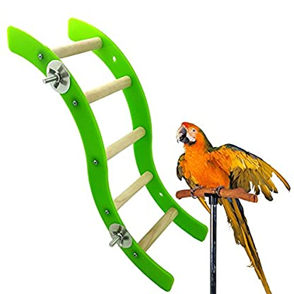 Pet Bird Parrot Hamster Acrylic Wave Ladder Stand Crawling Ladders Cage Play Fun Toy 1