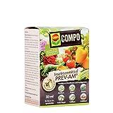 COMPO Insektenmittel PREV-AM, Bekämpfung von Schädlingen an Zierpflanzen und Fruchtgemüse, 50 ml