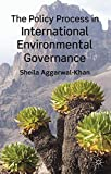 The Policy Process in International Environmental Governance