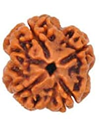 AJ RETAIL 100% Original and Natural Mantra Siddha Rare 4 Mukhi Nepal Rudraksha with IGL Lab Test Certificate