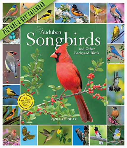 Audubon Songbirds and Other Backyard Birds