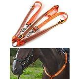 AimdonR Harnais de Cheval LED, Pointe de visibilité élevée de Collier de cuirasse de Cheval pour l'équipement de sécurité réglable d'équitation