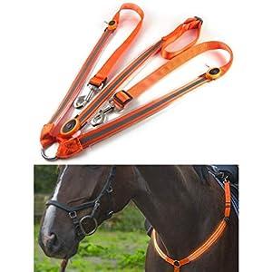 Kenyaw LED Pferdegeschirr,Pferdegeschirr Pferde Brustgurt Robuste und Komfortable Sicherheitsausrüstung Beste Sichtbarkeit beim Reiten für sichtbares Pferd(Orange)