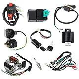 MuZuZi Faisceau de câblage CDI Kit de câblage de l'ensemble des clés de la bobine d'allumage pour ATV 50/70/90/110CC