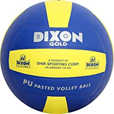 Dixon VB-BUYW01 Leather Volleyball, Standard (Blue)