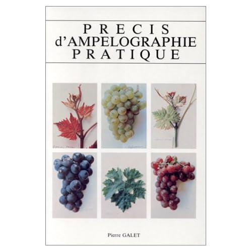 Précis d'ampélographie pratique, 7e édition
