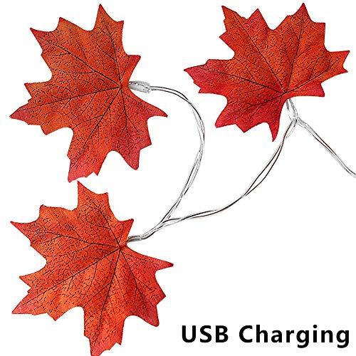 iBaste Maple Leaf Shaped LED Lichterketten Batteriebetrieben und USB betrieben 4 Meter Personalisierte DIY dekorative String Licht für Weihnachten, Schlafzimmer, Terrasse, Hochzeit, Party