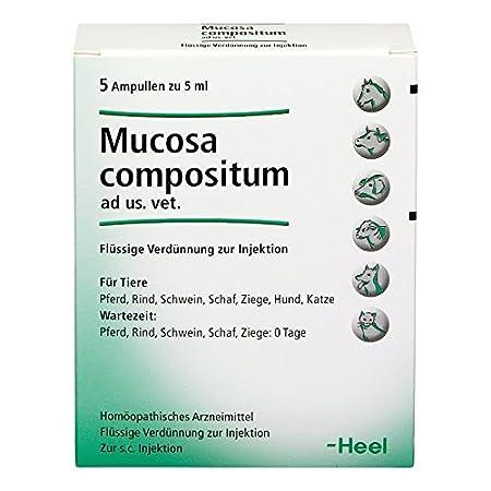 Heel Mucosa compositum ad us. vet. Ampullen, 5 St. Ampullen