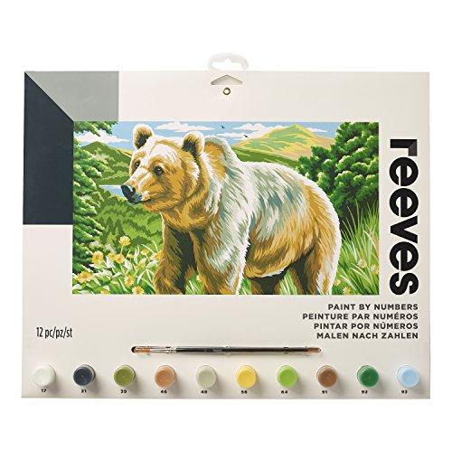 Reeves - Creatividad - Pintar por números - Grande, oso americano