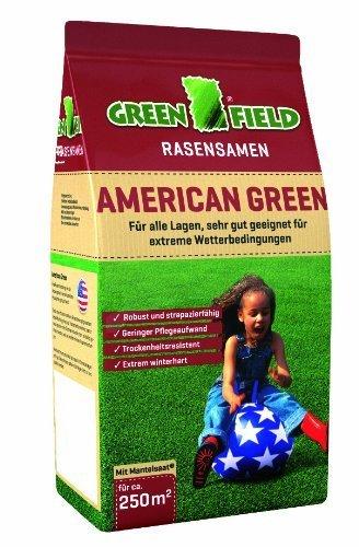 Greenfield 62051 American Green Rasensaat 5 kg für ca. 250 qm