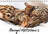 Bengal Kätzchen 2 (Tischkalender 2019 DIN A5 quer): Bengal Kitten für das ganze Jahr (Monatskalender, 14 Seiten ) (CALVENDO Tiere)